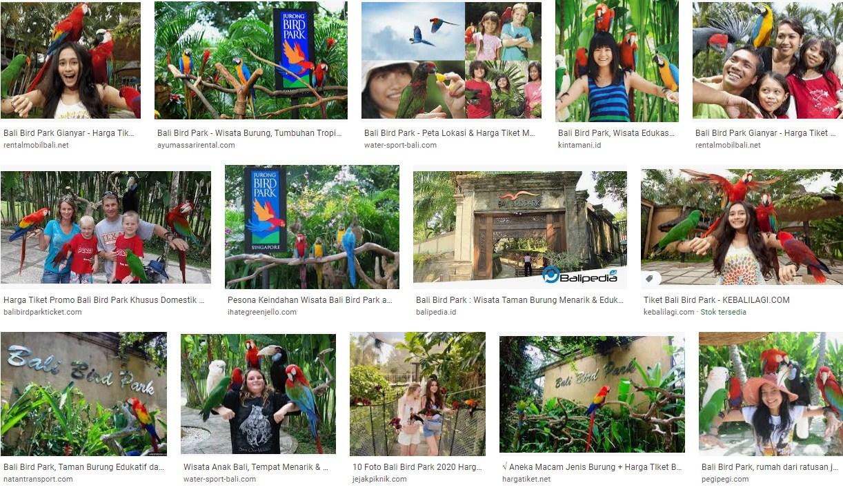 Tempat Wisata Bali Berd Park