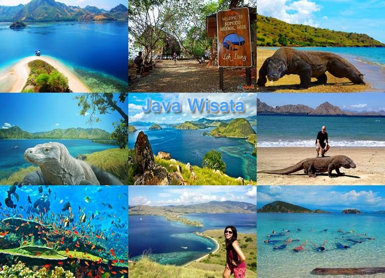 Tempat Wisata Indonesia di Pulau Komodo (javawisata.com)