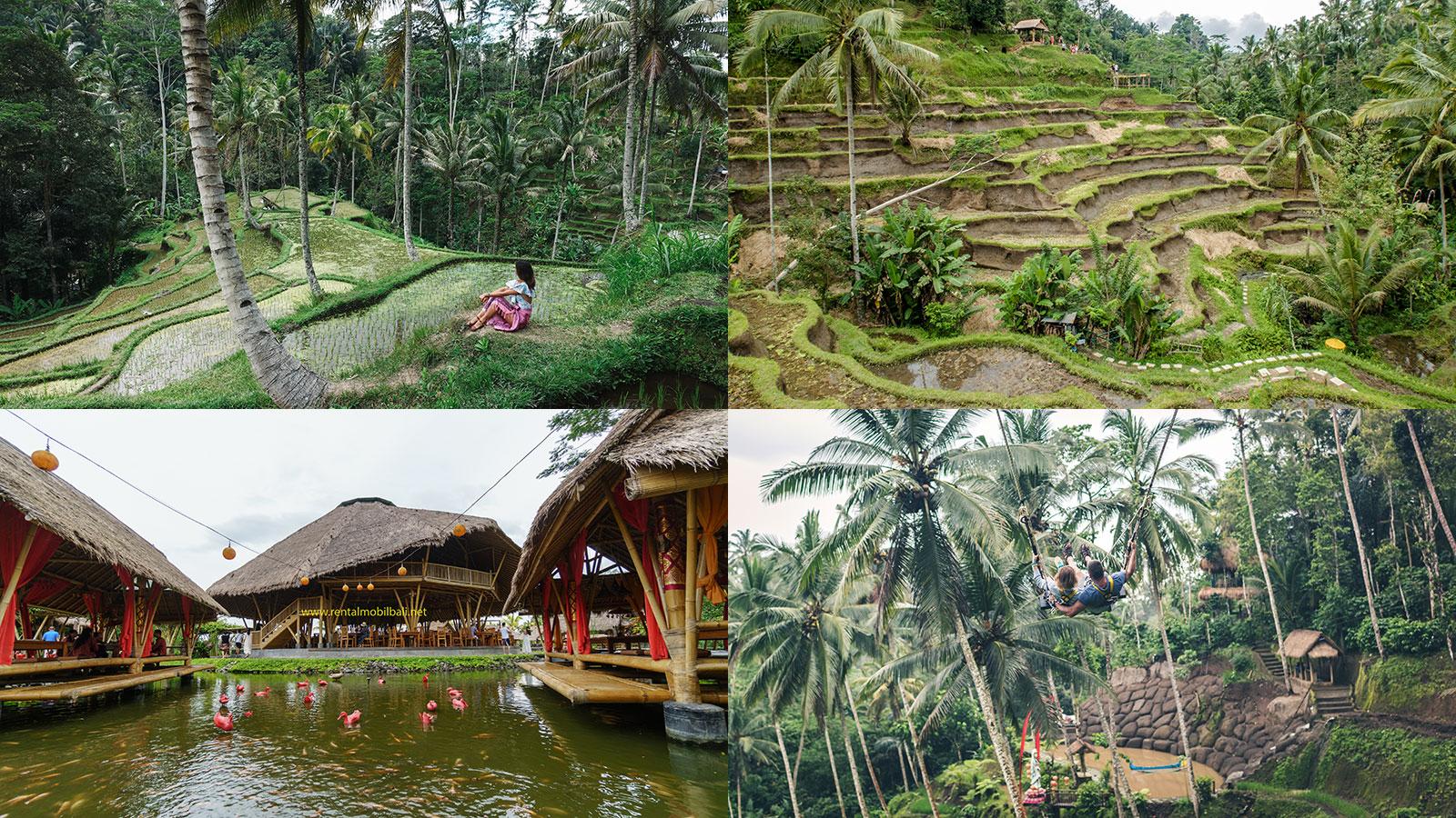 Pesona Indonesia, Wisata Ubud Bali Primadona Pariwisata Indonesia