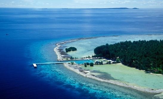 Ekosistem wisata di Karimun Jawa (triptohiddenparadise.com)
