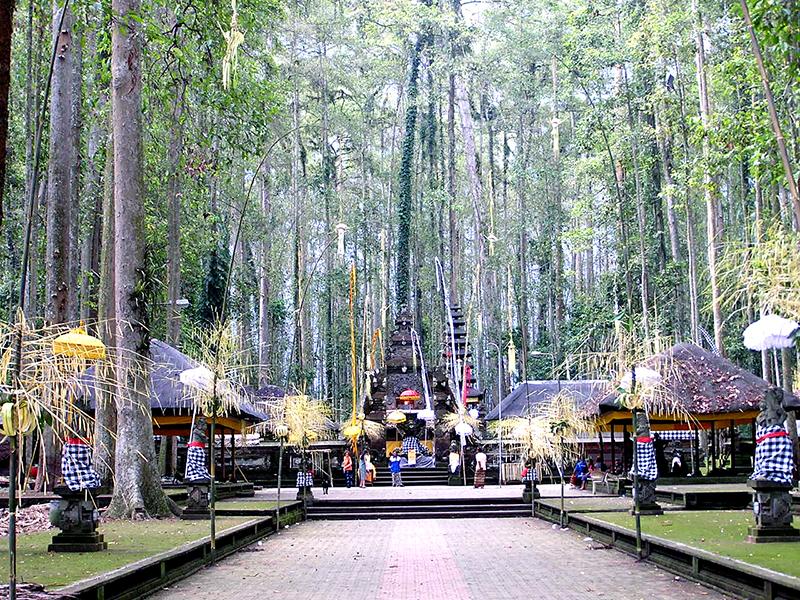Pulau-Bali-Tempat-Menarik-Suasana-Sangeh-bali-travelnews.com