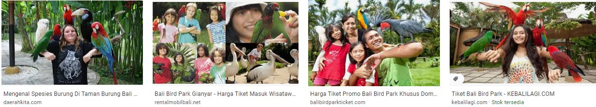 When was bali bird park opened brainly