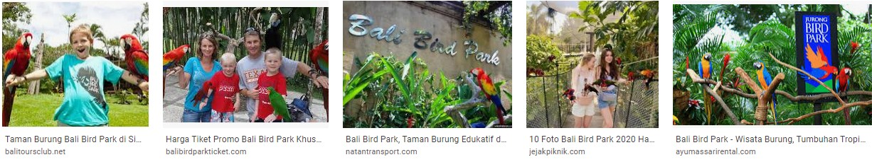When was bali bird park opened