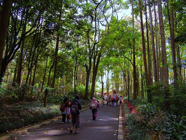 Wisata Lembang Taman Juanda (Idetrips.com)