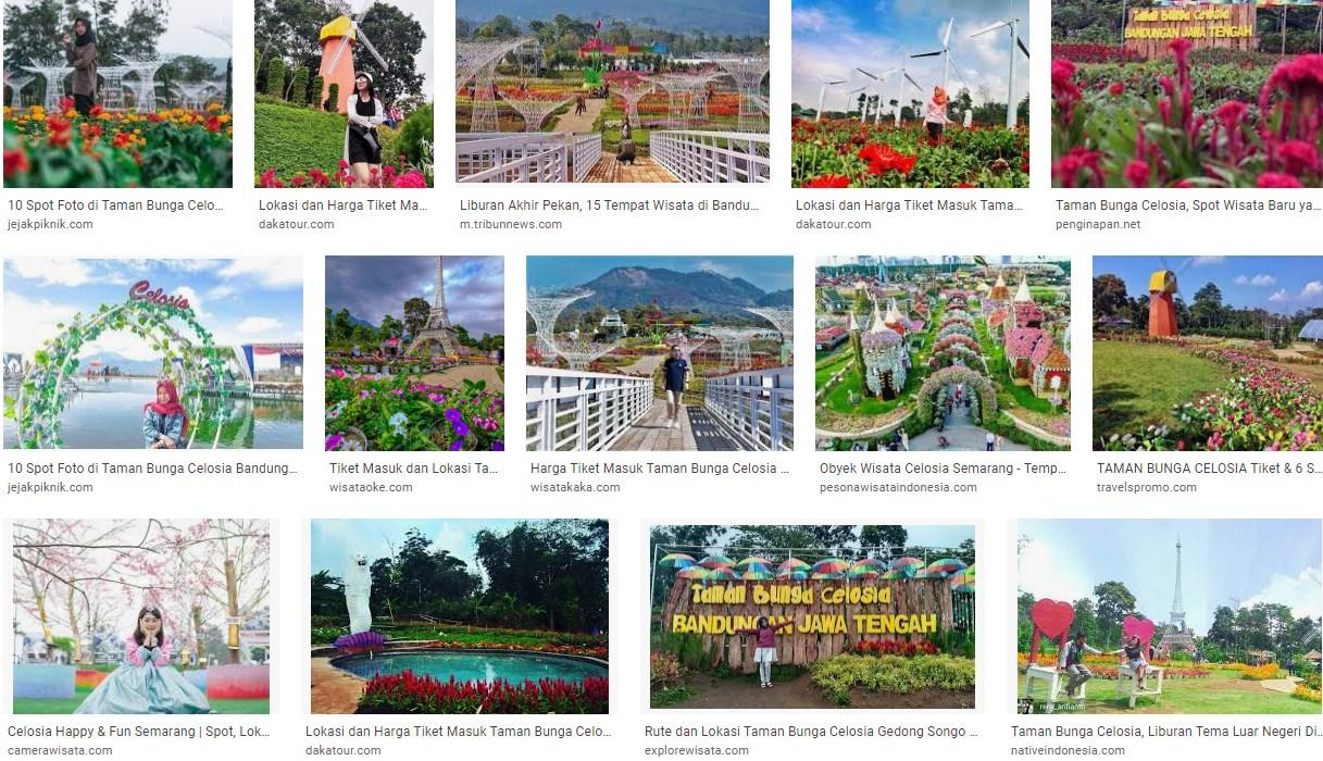 Obyek Tempat Wisata Celosia Semarang Jawa Tengah
